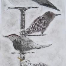 Birds : Collagraph : Annabelle Deutsch