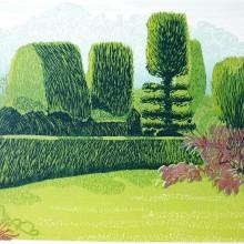 Montacute Garden : Linocut : Ruth Oaks